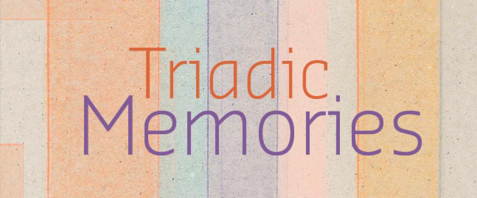 01 | Triadic Memories